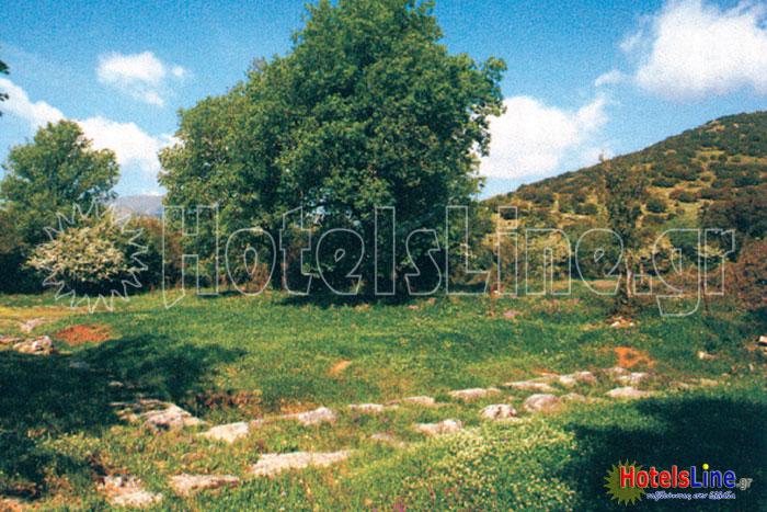 Αρχαιολογικός χώρος Αρχαίου Κλείτωρα