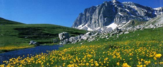 Εθνικός Δρυμός Βίκου - Αώου. Το οροπέδιο των Λιμνών (Λάκκα Τσουμάνη) και στο βάθος η κορυφή Αστράκα (2.436 μ.)