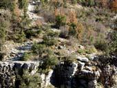Μικρό και Μεγάλο Πάπιγκο, Ζαγοροχώρια