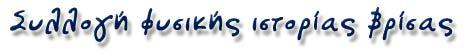 Λέσβος, συλλογή φυσικής ιστορίας Βρίσας