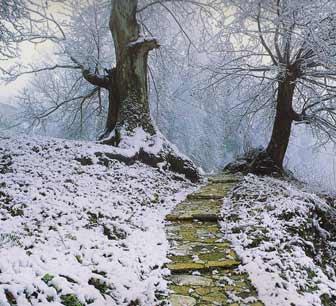 Μαγνησία, μονοπάτι στη Μαγνησία τον Χειμώνα