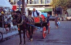 Πιερία, παραδοσιακή άμαξα