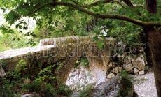 Στη γέφυρα Ντάλα συναντάται το τσαγγαριώτικο ρέμα με τον Αχέροντα. Ποταμός Αχέροντας, Αχέρων. Θεσπρωτία