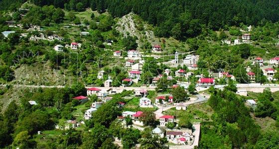 Δέση Τρικάλων. Το χωριό όπως φαίνεται από την Γκούρα