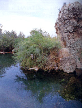 Φθιώτιδα, Ιαματικές πηγές Ιαματικες Πηγές - Ψωρονέρια